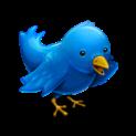 twitter_bird logo